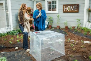 Vegetable Garden Critter Control Cages Under 20 Dollars!
