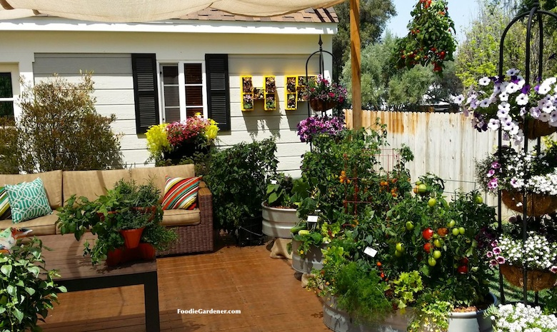 Container Garden Design Property grow a container vegetable garden on your patio: tips | the foodie