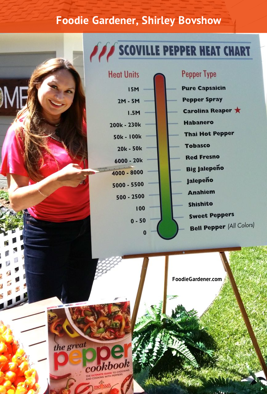 Scoville Heat Rating Chart For Hot Peppers | The Foodie