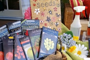 Organic Vegetable Seed Sources