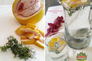 Grapefruit and Rosemary Water: Fresh From the Foodie Garden
